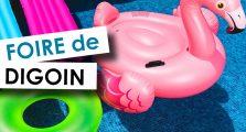 Foire de Digoin - Aquilus Paray le Monial(71)